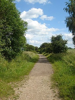 Stour Valley path - geograph.org.uk - 186694