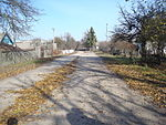 Street in Topilnia 02.JPG
