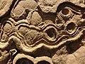 Stromatolite (fossil) at Göteborgs Naturhistoriska Museum 8899.jpg