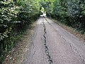 Subsidence on road to Lane End Farm - geograph.org.uk - 1492716.jpg