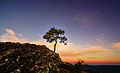 Sunrise Parque natural de las Sierras de Cazorla, Segura y Las Villas.jpg
