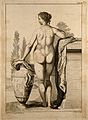 Superficial anatomy of the woman; posterior view. Engraving Wellcome V0008379.jpg
