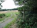 Sussex Border Path near Tilkhurst Farm - geograph.org.uk - 226274.jpg