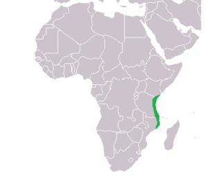 Swahili coast - The Swahili Coast