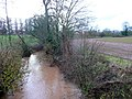 Swollen River Leadon 2 - geograph.org.uk - 1611297.jpg