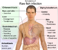 Symptoms of Raw fish infection.png