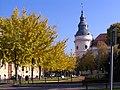 Szentes 2012-11-16, Városháza. Ősz - panoramio (14).jpg