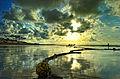 THE BEACH MIRRORS THE SKY.jpg