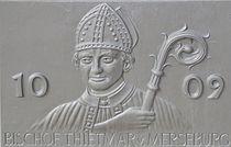 Tafel 1009 Bischof Thietmar v. Merseburg.jpg