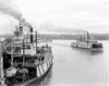 Tahoma and Bailey Gatzert (sternwheelers) at Portland OR ca 1900.PNG