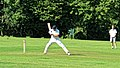 Takeley CC v. South Loughton CC at Takeley, Essex, England 047.jpg