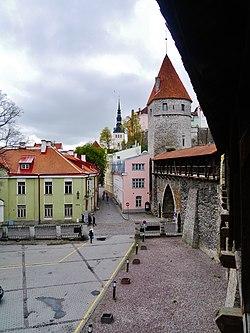 Tallinn Stadtmauer 25.JPG