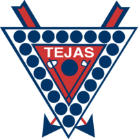 Tejas Triangle Color Logo.png