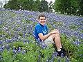 Texas Bluebonnet Background Wallpaper.jpg