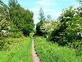 The Hudson Way to Beverley - geograph.org.uk - 183704.jpg
