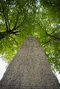 The Levene Runestone.jpg