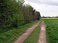 The Path to Holme upon Spalding Moor - geograph.org.uk - 411507.jpg