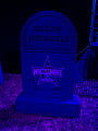 The Undertaker's Graveyard Shawn Michaels 2009.jpg