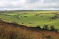 The Valley of the Stones, near Little Bredy, Dorset.jpg