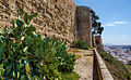 The alcazaba from the side (13868486513).jpg