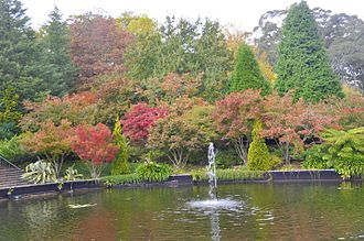 Mount Wilson, New South Wales - The autumn colour of the Bebeah Private Garden