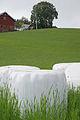 The farm (6136326308).jpg