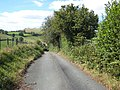 The lane from Cefnllwyni to Llanfihangel - geograph.org.uk - 559101.jpg