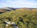 The summit of Bye Hill - geograph.org.uk - 303481.jpg
