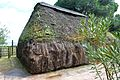 Tipo de Edificación cubierta en materia vegetal en el parque Doñana.jpg