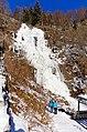 Todtnauer Wasserfall Winter 2620.jpg