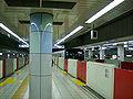 TokyoMetro-nakanosakaue-platform.jpg