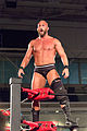 Tommaso Ciampa ROH 2013.jpg