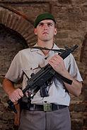 Topkapı sarayında nöbetçi Jandarma Eri