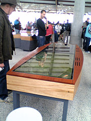 Touch screen table at the National Arboretum Canberra