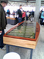 Touch Screen Table at National Arboretum Canberra.jpg