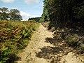 Track on east edge of Otterburn Ranges - geograph.org.uk - 1484293.jpg