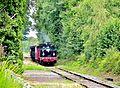 Train touristique. (1).jpg