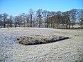 Trees and Frosty Field Near Farmersfield - geograph.org.uk - 638412.jpg