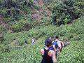 Trekking in Chiang Rai Province 2007-05 2.JPG