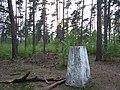 Triangulation pillar, Beacon Hill - geograph.org.uk - 166352.jpg
