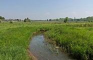 Tussen Linne en Brachterbeek, de Vlootbeek foto7 2017-05-10 12.31.jpg