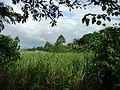 Tuy,Balayan,Batangasjf9755 13.JPG