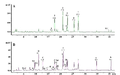 Typical LC-DAD chromatograms of Bergamot juice at 282 nm (A) and 330 nm (B) - Molecules 2008, 13(9), 2220-2228.png