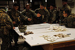 U.S. & Romanian Forces Conduct Bilateral Training 150228-M-XZ244-090.jpg