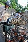 USAID helps Vietnam combat bird flu (5070815407).jpg