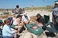USFWS Northeast Regional Director Wendi Weber at red knot bird banding, Fortescue Beach (NJ) (17688869582).jpg