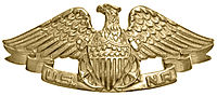 USNR Qualification Pin.jpg