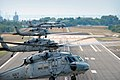 US Navy 070724-N-8907D-413 Five MH-60S Seahawks, from the.jpg