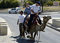 US Navy 080618-N-3316L-021 Boatswain's Mate 3rd Class Jonathan Lee and Seaman William Whale finish up a camel ride in Jerusalem during a MWR-sponsored tour of the Holy Land, part of a port visit by the amphibious transport dock.jpg