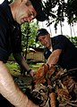US Navy 090428-N-6538W-178 Chief Machinist's Mate James Trogden and Senior Chief Cryptological Technician Technical Alex Peloquin pick up leaves and debris.jpg